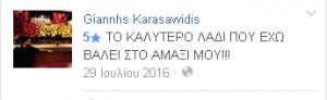 facebook-kritiki-pelati-lianikis-elgine-ladi-10w40